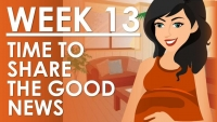 The Pregnancy - Week 13