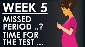 The Pregnancy week 5 - Time for the pregnancy test